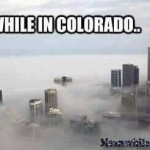 Trees WILL Definitely Be Involved   meanwhile in colorado marijuana meanwhileinamerica 150x150