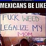 Trees WILL Definitely Be Involved   mexicans fuck weed legalize my mom Meanwhile In America 150x150c