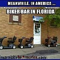 So, hows the fornicating gourmet? Doing quite well, thank you. Yesterday I had a soft boiled egg & a quickie.   Biker Bar Florida Hoveround Scooters Meanwhile In America 120x120c